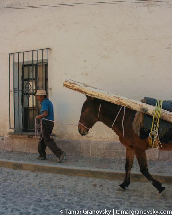 Tepetlaoxtoc de Hidalgo