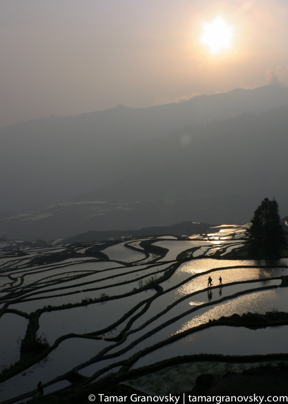 Yuan Yang Rice Terraces