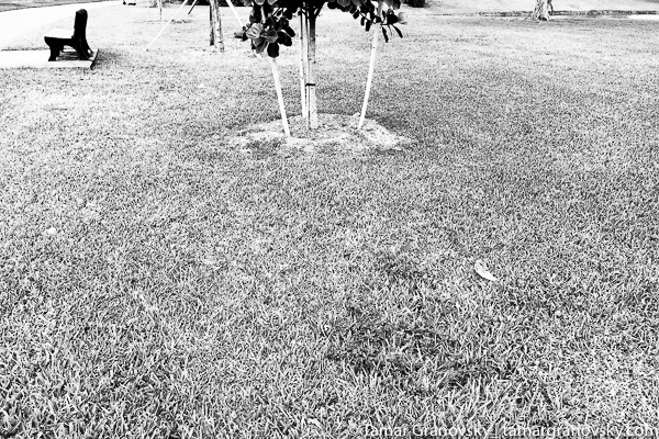 Century Village, Deerfield Beach, Florida, U.S.
